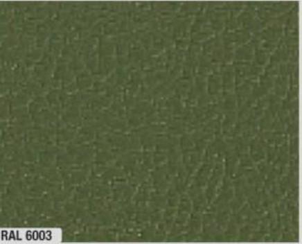 Vert olive - 6003